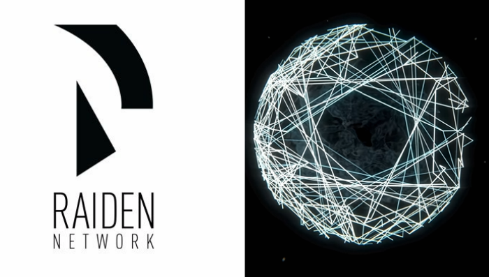 Image result for the raiden network